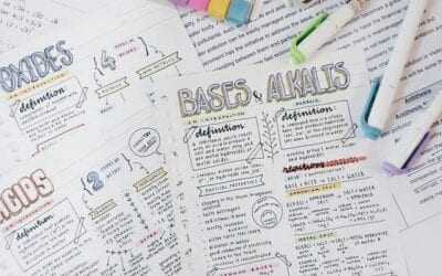 The Ultimate Study Guide: Part 2